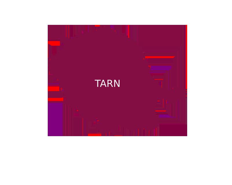 incrustation département du Tarn