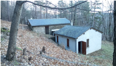 Création d'une maison de la Forêt